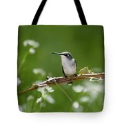 Meadow Hummingbird Tote Bag