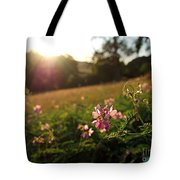 Meadow Sunset Tote Bag