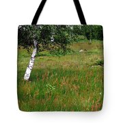 Meadow With Birch Trees Tote Bag