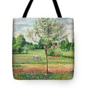 Meadow With Grey Horse, Eragny Tote Bag
