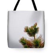 Meadowlark - 1 Tote Bag