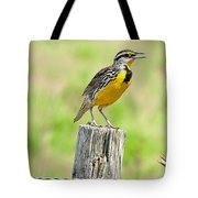 Meadowlark 7 Tote Bag