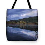 Meadows Dusk Tote Bag