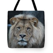Meal Time Tote Bag