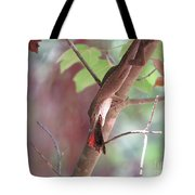 Mealtime Tote Bag