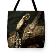 Mean Poisonous Snake Tote Bag