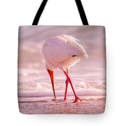 Meandering Beauty Cortez Beach Tote Bag