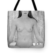 Meditation In The Snow Tote Bag