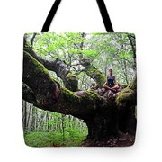 Meditation On Centenary Tree  Tote Bag