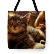 Meditative Pose Tote Bag