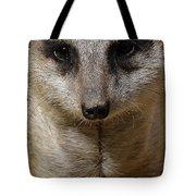 Meerkat Looking At You Tote Bag