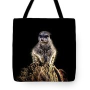 Meerkat Lookout Tote Bag
