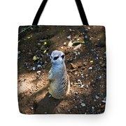 Meerkat Responding Tote Bag