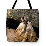 Meerkats Keeping An Eye Out Part 2 Tote Bag