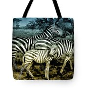 Meet The Zebras Tote Bag