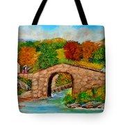 Meeting On The Old Bridge Tote Bag