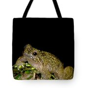 Mehu�n Green Frog Tote Bag