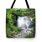 Meigs Falls Tote Bag