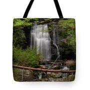 Meigs Falls One Tote Bag