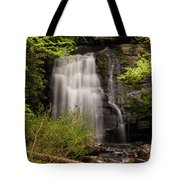 Meigs Falls Two Tote Bag