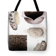 Melanoma, Blood And Stomach Tote Bag