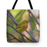 Mellow Yellow - American Warbler - Setophaga Petechia Tote Bag