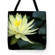 Mellow Yellow Water Lily Tote Bag