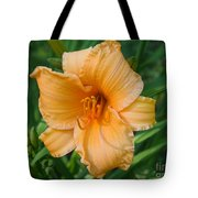 Melon Extract Tote Bag