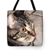 Melvin The Wondercat Tote Bag