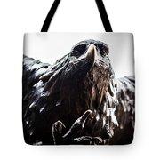 Memorial Eagle Tote Bag