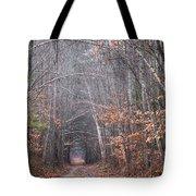 Memory Lane 1 Tote Bag