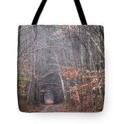 Memory Lane 1 Tote Bag