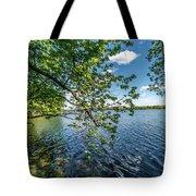 Mendota Lake Tote Bag