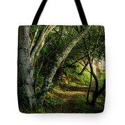 Mendoza Trail Tote Bag