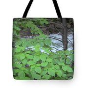 Merced In Yosemite Tote Bag