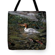 Merganser And Spawning Salmon - Odell Lake Oregon Tote Bag