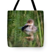Merganser Duckling Tote Bag