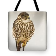 Merlin In A Snow Storm Tote Bag