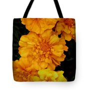 Merry In Gold Tote Bag