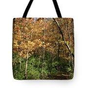 Merwin Autumn Trail Bend Tote Bag
