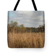 Merwin Prairie Autumn I Tote Bag