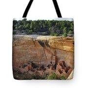 Mesa Dwelling Tote Bag