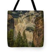 Mesa Falls In Summer Tote Bag