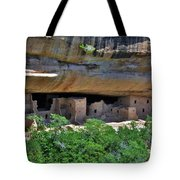 Mesa Verde National Park 4 Tote Bag