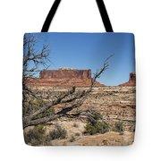 Mesas Near Moab Tote Bag