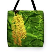 Mesquite Bloom Tote Bag by Scott Cordell