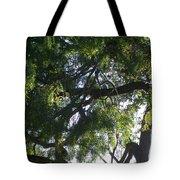 Mesquite Tangle Tote Bag