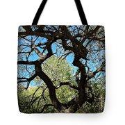 Mesquite Window Tote Bag