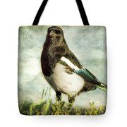 Message From The Magpie Tote Bag by Belinda Greb