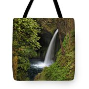 Metlako Falls In Spring Tote Bag